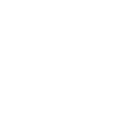LinkedIn Icon in white