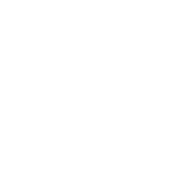 Twitter Icon in white
